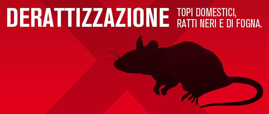 costo derattizzazione topi