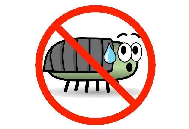 eliminare gli insetti dalla cucina