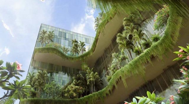 giardini verticali